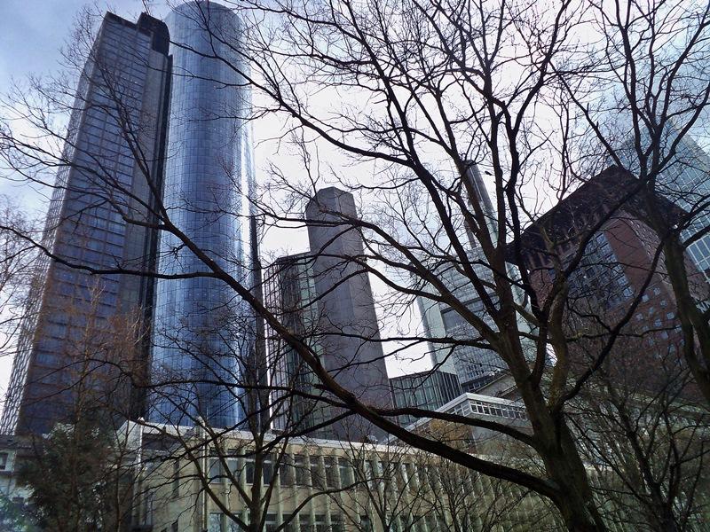 Gradska djungla vyv Frankfurt